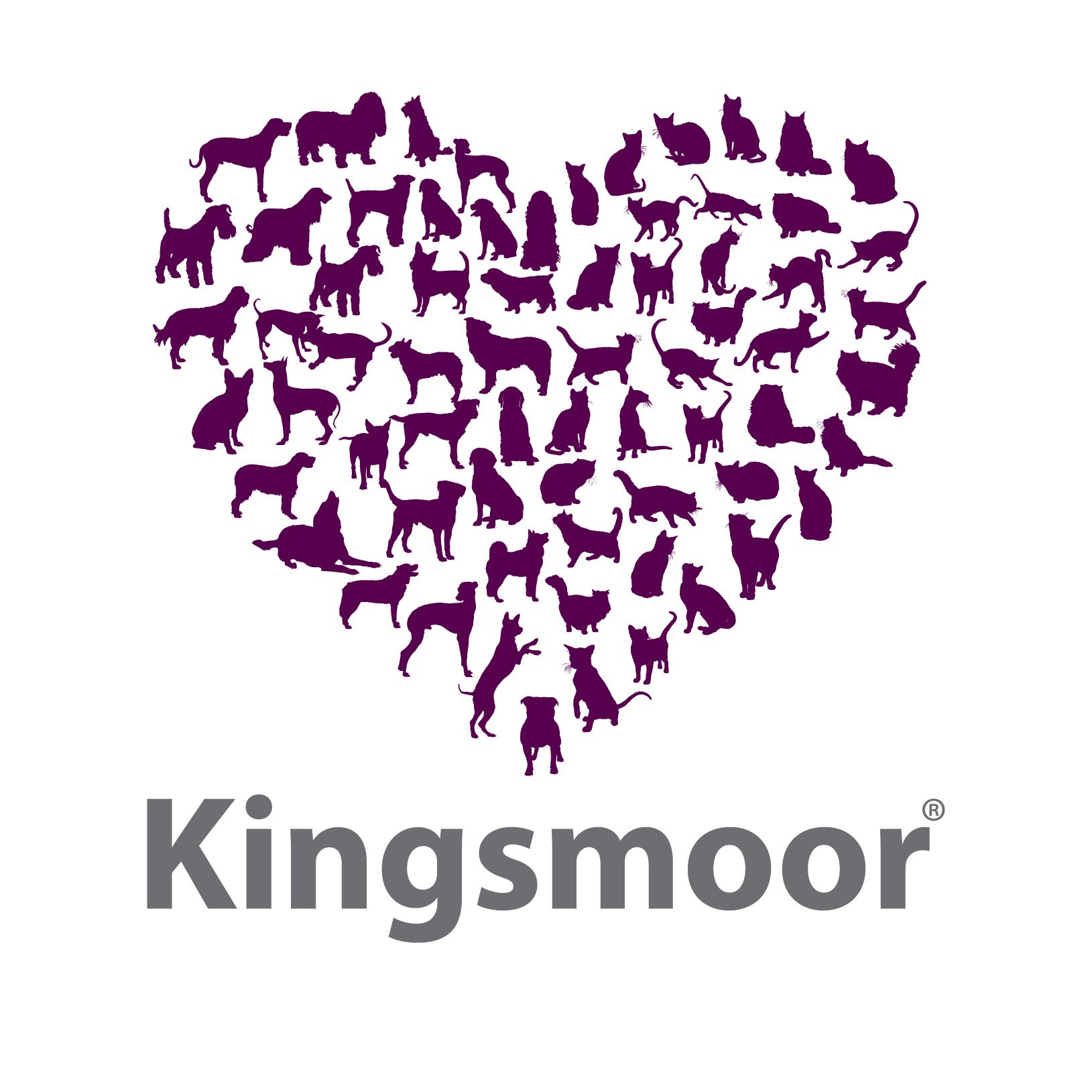 Kingsmoor_logo (color)(PNG)